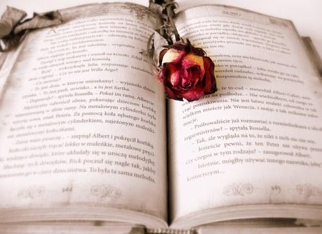 book-419589__340